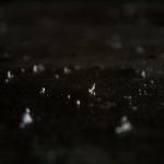 Bildschirmfoto 2013-12-09 um 21.08.04