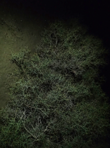 Bildschirmfoto 2014-12-02 um 14.50.32
