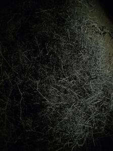 Bildschirmfoto 2014-12-02 um 14.50.50