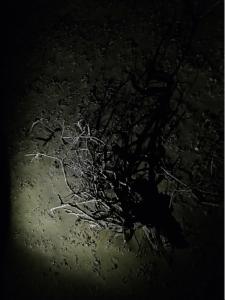 Bildschirmfoto 2014-12-02 um 14.51.15